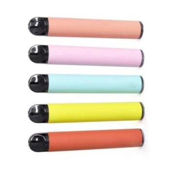 Pop Pet Diapers Adjustable Disposable Dog Physiological Sanitary Pants 10PCS/Bag